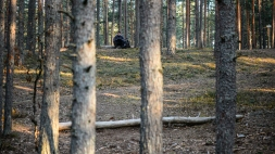 Puude taga on mets ja vahepeal üks mees